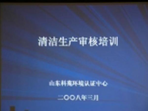 黔东南清洁生产审核