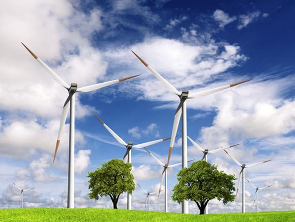贵州能源审计
